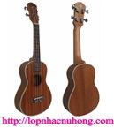 Đàn ukulele 26